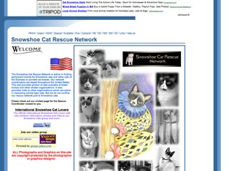 Snowshoe Cat Rescue Network