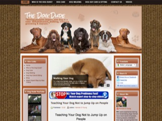 The Dog Dude NZ Dog Trainer