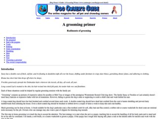 Dog Owner's Guide: A Grooming Primer
