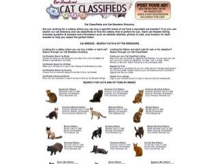 Cat Classified