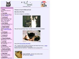 Crazy for Kitties: Celebrating Felines
