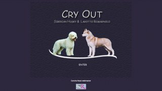 Cry Out Kennel