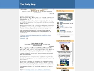 The Daily Dog