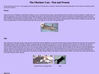 The Oberhart Cats