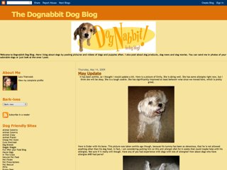 Dognabbit Dog Blog
