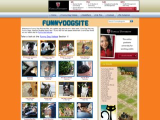 Funny Dog Site