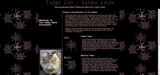 Tabby Cat – SaSha Chan