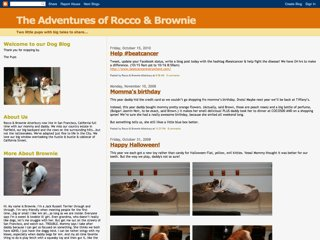 The Adventures of Rocco and Brownie