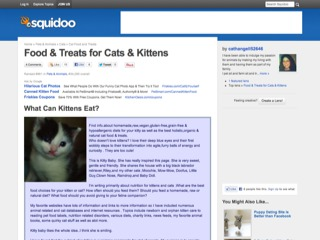 Food &amp; Treats for Cats &amp; Kittens