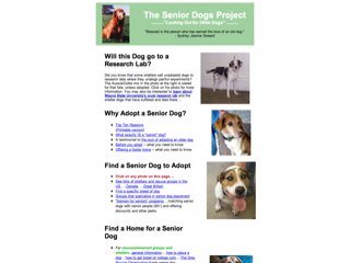 The Senior Dogs Project
