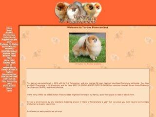 Toybox Pomeranians