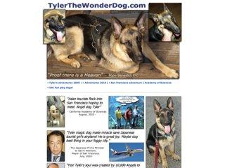Tyler the Wonder Dog