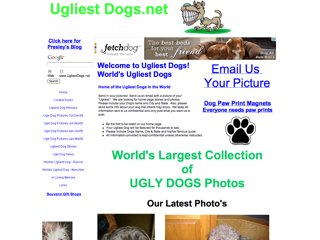 Ugliest Dogs