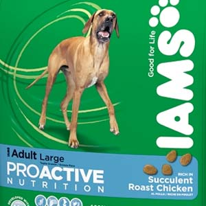 Iams Dog Food Reviews, Ratings and Analysis