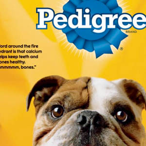 Pedigree Dog Food Reviews, Ratings and Analysis