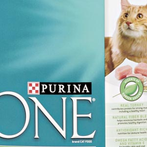 Purina ONE Cat Food Reviews, Ratings and Analysis